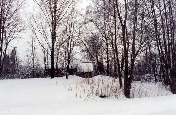 Дом Веры Прокопьевны Дроздецкой 1996г.