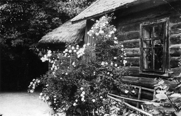 Дом Веры Прокопьевны Дроздецкой 1976г.
