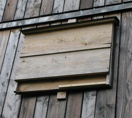 Flachkasten an Scheune, Foto: LBV