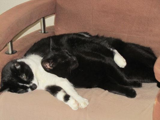 lekker samen slapen