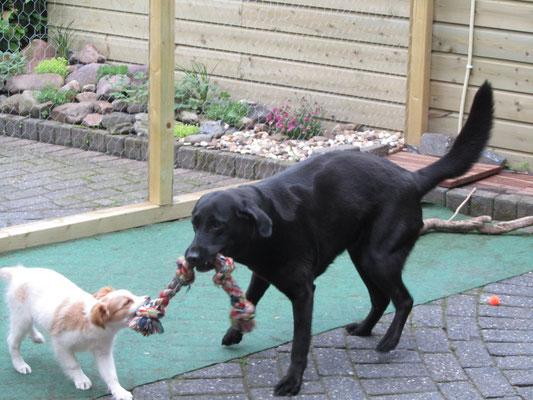 We kunnen samen leuk spelen trek je rot heet dit spelletje