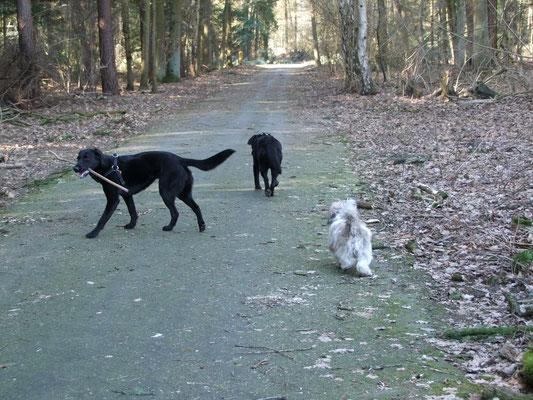 Onze eerste wandeling samen als stelletje