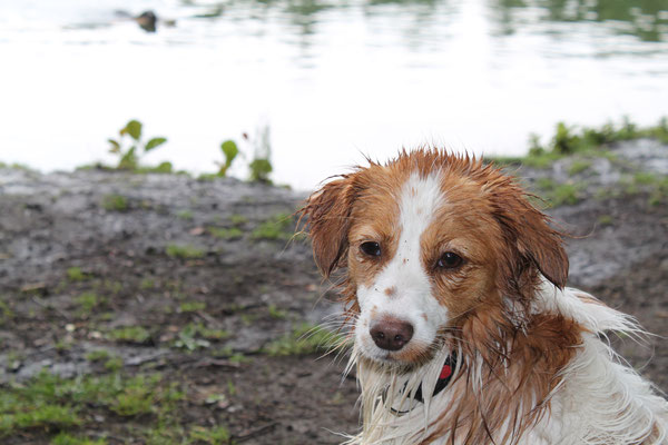 Nee geen foto's na het zwemmen