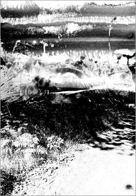 Fil de l'eau 24. Montage photographique, impression jet d'encre contrecollée sur dibond, 70 x 50 cm.