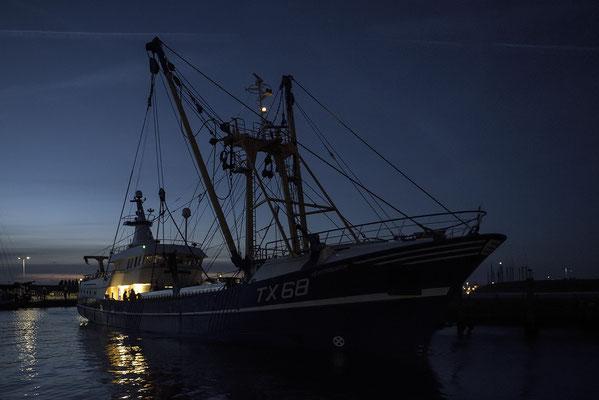 Fischerboot verlässt den Hafen von Oudeschild