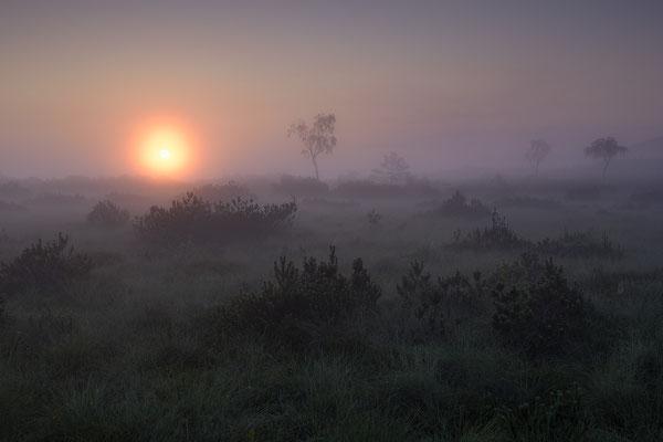 Kendlmühlfilzen, Sonnenaufgang