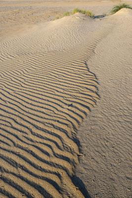 Sandmuster im Dünengebiet De Hors