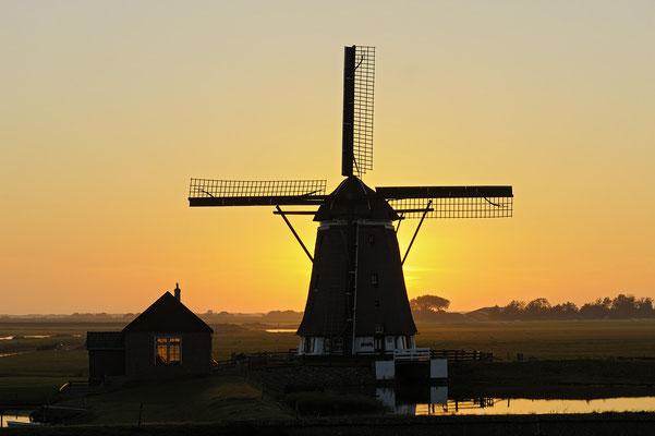 Mühle De Bol am Abend