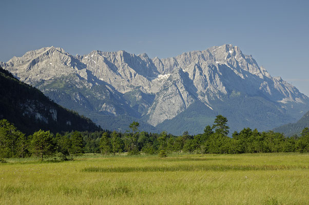 Flachmoor mit Wettersteingebirge