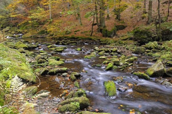 Große Ohe, Steinklamm, NP Bayerischer Wald (D)