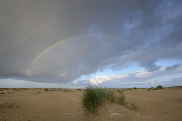 Regenbogen im Dünengebiet De Hors