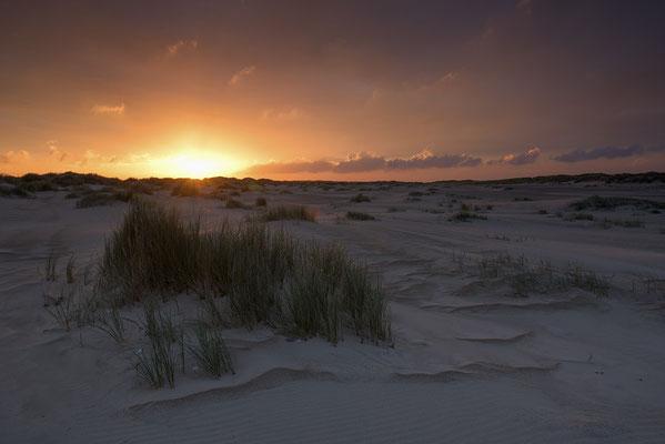 Sonnenaufgang im Dünengebiet De Hors