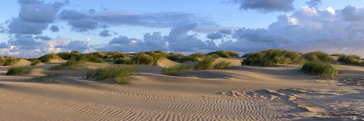 Dünen, Texel (NL)
