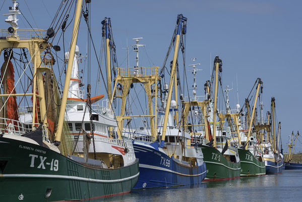 Fischerboote in Oudeschild
