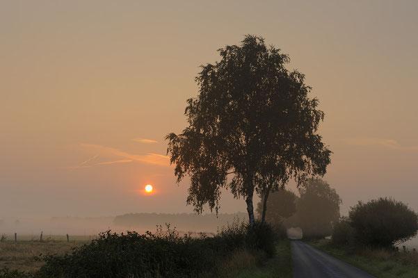 Morgenstimmung bei Sonnenaufgang