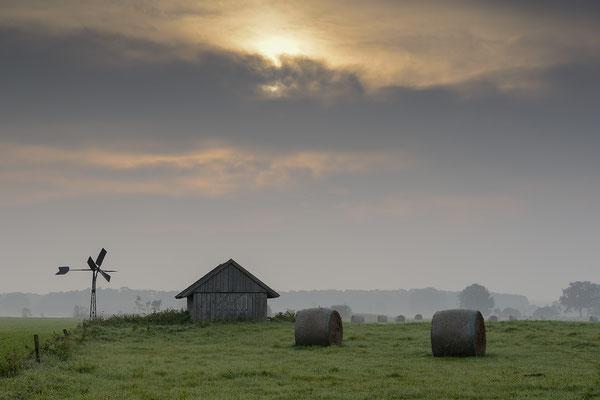 Wiesenlandschaft und Wolkenstimmung