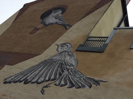 Streetart in Örebro, Vögel an Hauswand