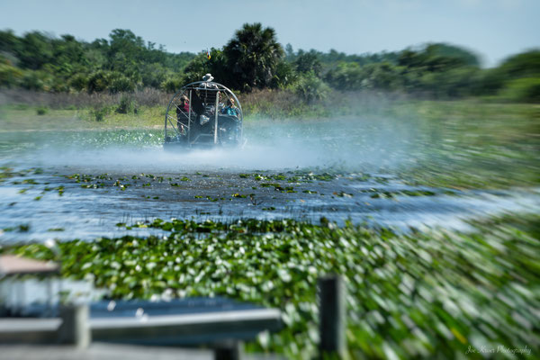 power of Airboat (Florida) Everglades