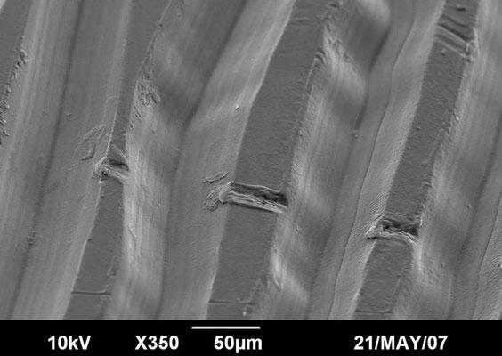 Plattenrille mit zerkratzter Oberfläche