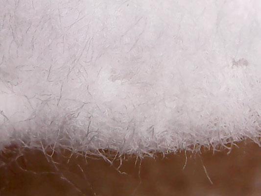 Mikroskop-Aufnahme eines Kosmetik-Pads