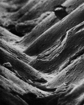 Bild einer Plattenrille mit Beschädigung, verursacht durch eine verschlissene Nadel.