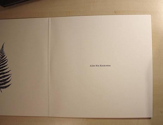 Aufgeklapptes Vinyl-Album (GAT)