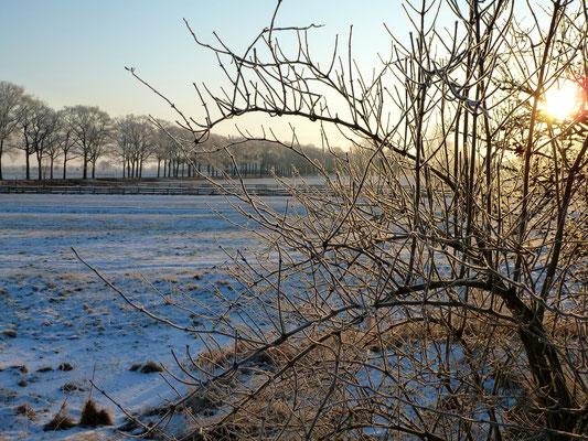 Winter in Unbesandten. Noch schöner...