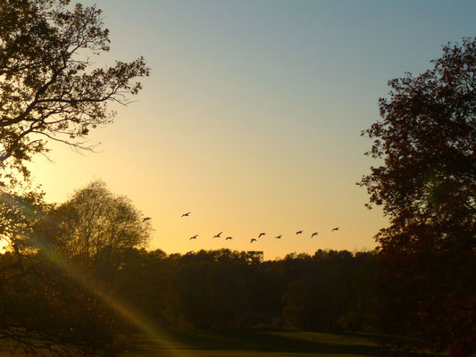 Der Herbst im Landhaus Lenzener Elbtalaue. Wunderschön...