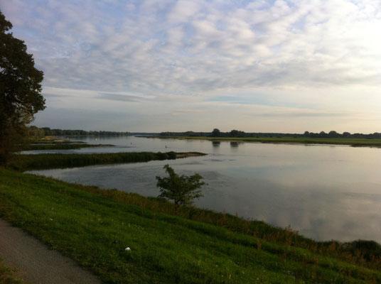 Verweilen an der Elbe