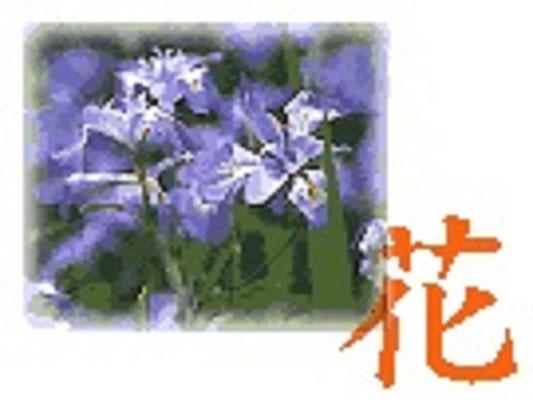 郡山市の花:ハナカツミ