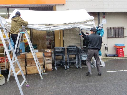 テントの組立作業