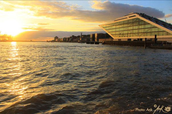 """Ausstellung am Schiffsanleger """"Dockland"""", direkt neben dem Gebäude """"Altona Cruise Center""""_ Foto: (c)Ank 10/2018"""