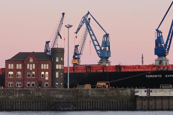 _Herbst in rosé_2020_ Hamburg an der Elbe. Foto: 2020 (c)Anka Blank