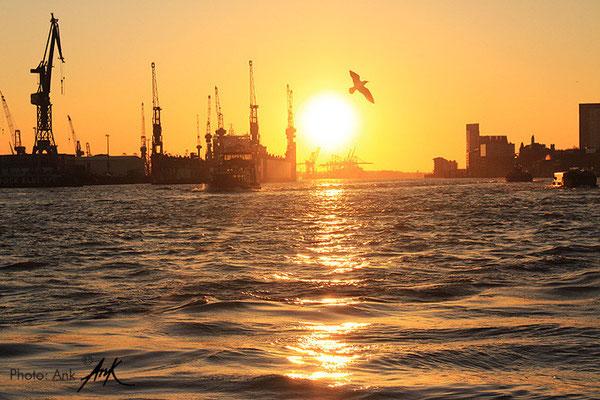 _Longing_ Hamburg along the waterfront, Foto: (c)Ank, 4/2015