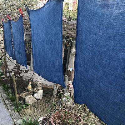 Weja Färbeset für Baumwolle und Leinen. Natürlich Färben mit Pflanzenfarbpulver. Indigo, Resed-Gelb, Mango, Krapp-Apricot, Holunder-Blau