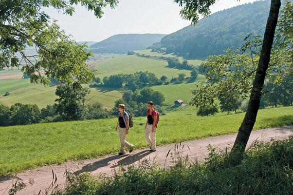 Wandern Naturpark Südschwarzwald - © R. Sigwart