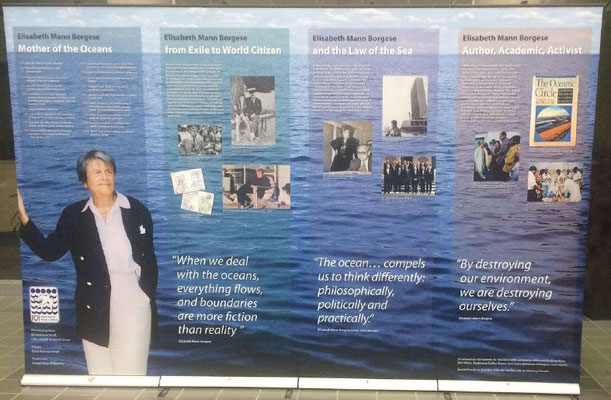 Four panel display highlights and celebrates key aspects of Elisabeth's life and work