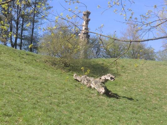 04 parc de Val Vert