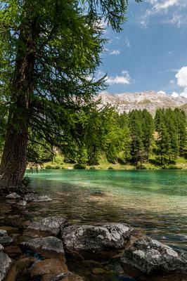 Palpuognasee Graubünden Schweiz