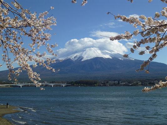 Lake Kawaguchi and Mt. Fuji