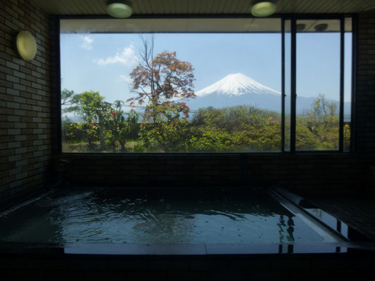 Bath with view of Mt. Fuji