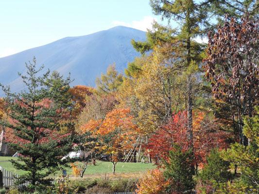 翌朝も快晴。目玉である、浅間山を目前に見るコテージ