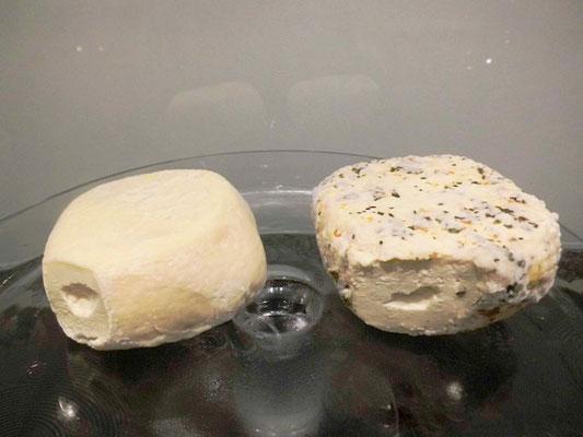 eigener Käse