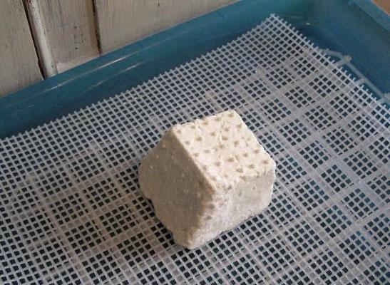 Käse selber machen; Käseseminar