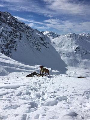 Skitour auf dem Muottas Muragl