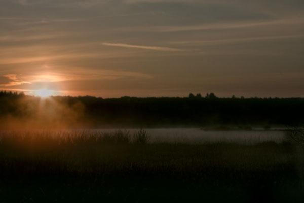 Jungferweiher im Sonnenaufgang