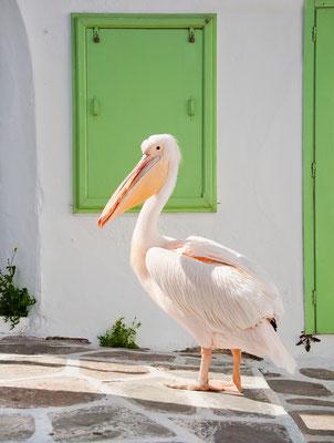 Mykonos - European Best Destinations - Mykonos copyright Natalia Dobryanskaya