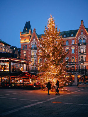Christmas tree in Stockholm - Copyright Visit Stockholm