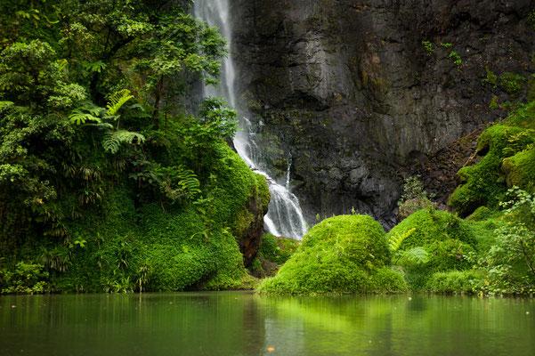 Tahiti Papenoo Valley copyright Josip Pastor