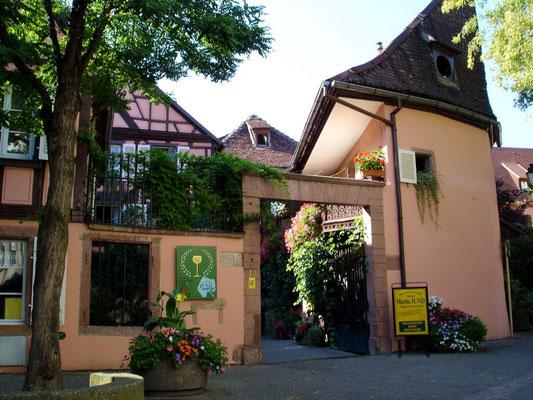 Domaine Jund, Colmar - Copyright Colmar Tourisme